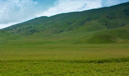 Gunung Dengan Savana Terindah di Indonesia  ModelHijab\u2122
